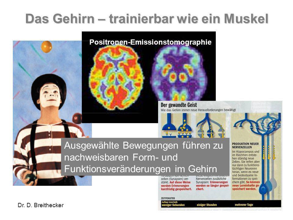 Dr. D. Breithecker Das Gehirn – trainierbar wie ein Muskel Positronen-Emissionstomographie Ausgewählte Bewegungen führen zu nachweisbaren Form- und Fu