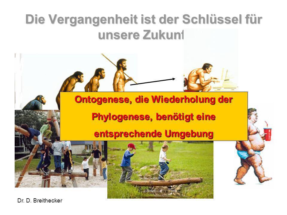 Dr.D. Breithecker Mehr Flexibilität und Mobilität So viel Statik wie notwendig...