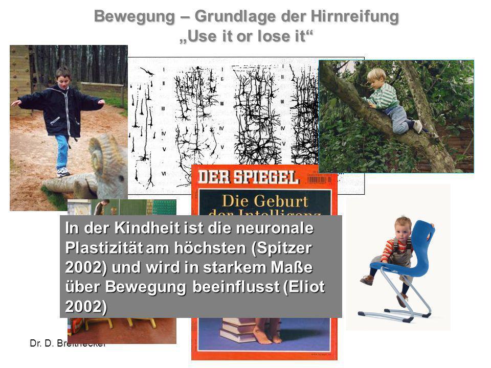 Dr. D. Breithecker Bewegung – Grundlage der Hirnreifung Use it or lose it In der Kindheit ist die neuronale Plastizität am höchsten (Spitzer 2002) und