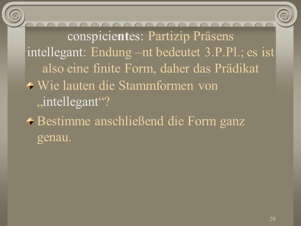 20 conspicientes: Partizip Präsens intellegant: Endung –nt bedeutet 3.P.Pl.; es ist also eine finite Form, daher das Prädikat Wie lauten die Stammform