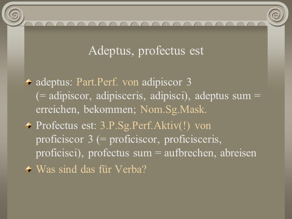 Adeptus, profectus est adeptus: Part.Perf. von adipiscor 3 (= adipiscor, adipisceris, adipisci), adeptus sum = erreichen, bekommen; Nom.Sg.Mask. Profe