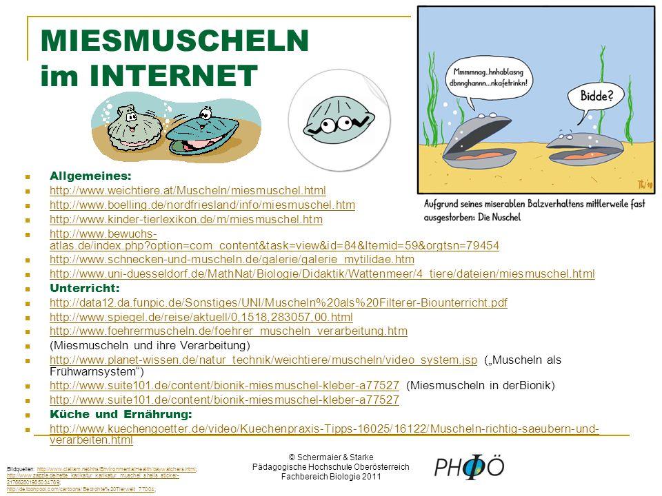© Schermaier & Starke Pädagogische Hochschule Oberösterreich Fachbereich Biologie 2011 MIESMUSCHELN im INTERNET Allgemeines: http://www.weichtiere.at/Muscheln/miesmuschel.html http://www.boelling.de/nordfriesland/info/miesmuschel.htm http://www.kinder-tierlexikon.de/m/miesmuschel.htm http://www.bewuchs- atlas.de/index.php?option=com_content&task=view&id=84&Itemid=59&orgtsn=79454 http://www.bewuchs- atlas.de/index.php?option=com_content&task=view&id=84&Itemid=59&orgtsn=79454 http://www.schnecken-und-muscheln.de/galerie/galerie_mytilidae.htm http://www.uni-duesseldorf.de/MathNat/Biologie/Didaktik/Wattenmeer/4_tiere/dateien/miesmuschel.html Unterricht: http://data12.da.funpic.de/Sonstiges/UNI/Muscheln%20als%20Filterer-Biounterricht.pdf http://www.spiegel.de/reise/aktuell/0,1518,283057,00.html http://www.foehrermuscheln.de/foehrer_muscheln_verarbeitung.htm (Miesmuscheln und ihre Verarbeitung) http://www.planet-wissen.de/natur_technik/weichtiere/muscheln/video_system.jsp (Muscheln als Frühwarnsystem) http://www.planet-wissen.de/natur_technik/weichtiere/muscheln/video_system.jsp http://www.suite101.de/content/bionik-miesmuschel-kleber-a77527 (Miesmuscheln in derBionik) http://www.suite101.de/content/bionik-miesmuschel-kleber-a77527 Küche und Ernährung: http://www.kuechengoetter.de/video/Kuechenpraxis-Tipps-16025/16122/Muscheln-richtig-saeubern-und- verarbeiten.html http://www.kuechengoetter.de/video/Kuechenpraxis-Tipps-16025/16122/Muscheln-richtig-saeubern-und- verarbeiten.html Bildquellen: http://www.clallam.net/hhs/EnvironmentalHealth/baywatchers.html; http://www.zazzle.de/nette_karikatur_karikatur_muschel_shells_sticker- 217682601985034789; http://de.toonpool.com/cartoons/Bedrohte%20Tierwelt_77004;http://www.clallam.net/hhs/EnvironmentalHealth/baywatchers.html http://www.zazzle.de/nette_karikatur_karikatur_muschel_shells_sticker- 217682601985034789 http://de.toonpool.com/cartoons/Bedrohte%20Tierwelt_77004