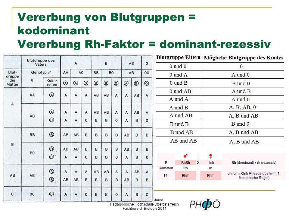 © Schermaier & Starke Pädagogische Hochschule Oberösterreich Fachbereich Biologie 2011 Vererbung von Blutgruppen = kodominant Vererbung Rh-Faktor = dominant-rezessiv
