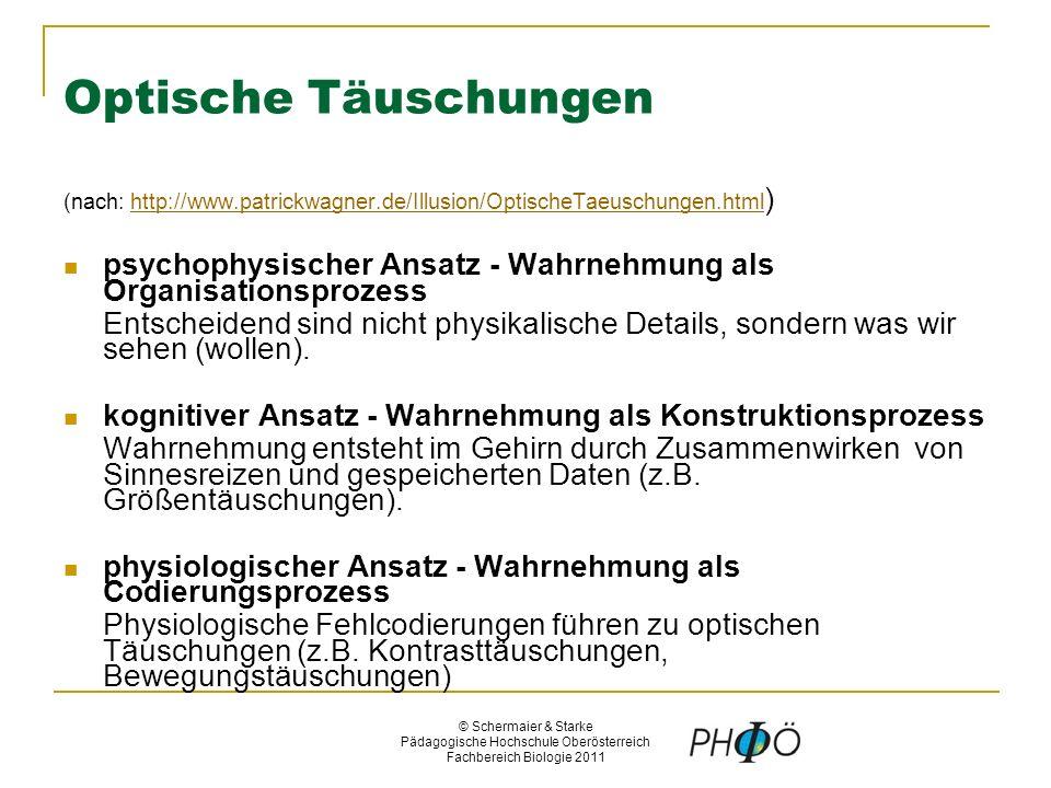 © Schermaier & Starke Pädagogische Hochschule Oberösterreich Fachbereich Biologie 2011 Optische Täuschungen (nach: http://www.patrickwagner.de/Illusion/OptischeTaeuschungen.html )http://www.patrickwagner.de/Illusion/OptischeTaeuschungen.html psychophysischer Ansatz - Wahrnehmung als Organisationsprozess Entscheidend sind nicht physikalische Details, sondern was wir sehen (wollen).