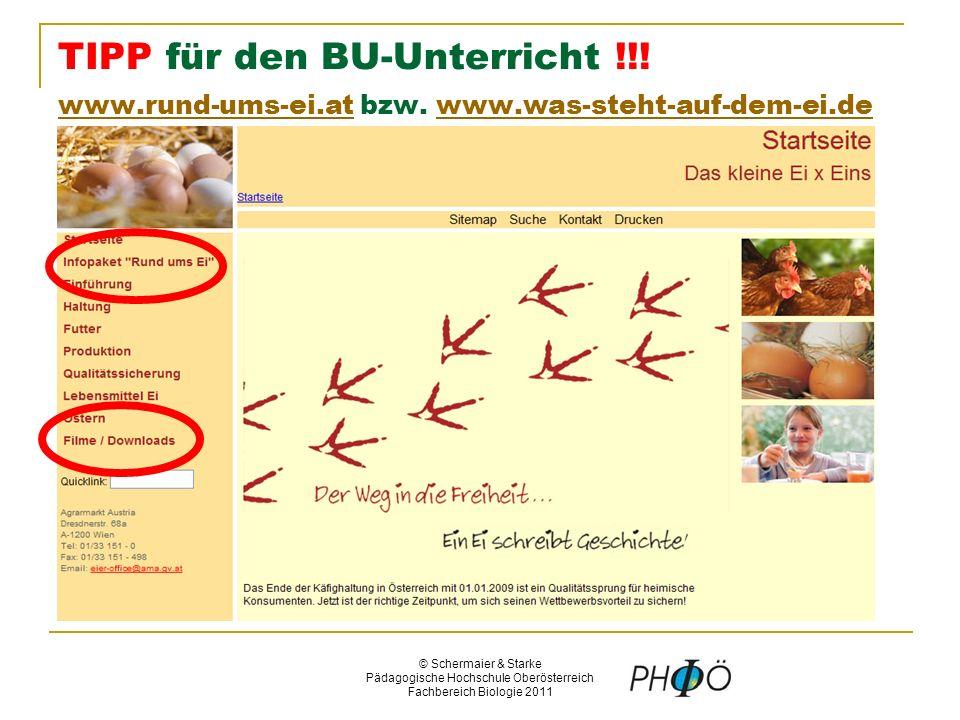 © Schermaier & Starke Pädagogische Hochschule Oberösterreich Fachbereich Biologie 2011 TIPP für den BU-Unterricht !!.