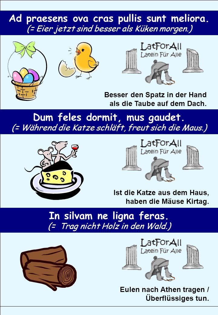 Ad praesens ova cras pullis sunt meliora. (= Eier jetzt sind besser als Küken morgen.) Besser den Spatz in der Hand als die Taube auf dem Dach. Dum fe
