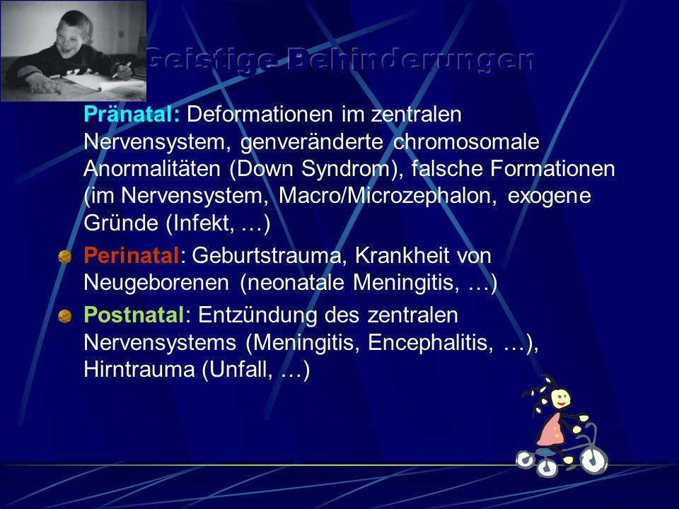 Pränatal: Deformationen im zentralen Nervensystem, genveränderte chromosomale Anormalitäten (Down Syndrom), falsche Formationen (im Nervensystem, Macro/Microzephalon, exogene Gründe (Infekt, …) Perinatal: Geburtstrauma, Krankheit von Neugeborenen (neonatale Meningitis, …) Postnatal: Entzündung des zentralen Nervensystems (Meningitis, Encephalitis, …), Hirntrauma (Unfall, …)