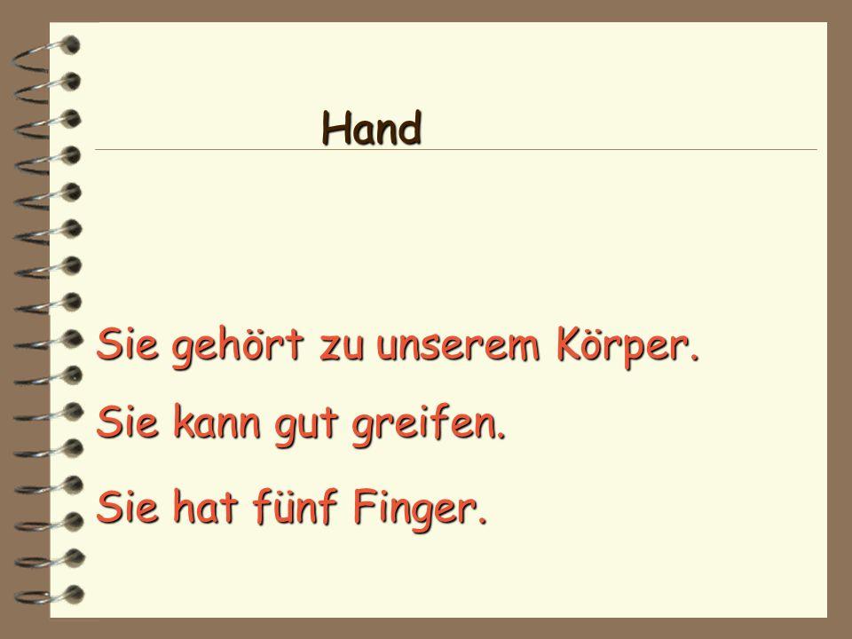 Sie gehört zu unserem Körper. Sie hat fünf Finger. Sie kann gut greifen. Hand