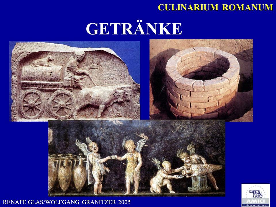 RENATE GLAS/WOLFGANG GRANITZER 2005 CULINARIUM ROMANUM vitis arbustiava