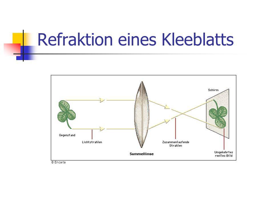 Refraktion eines Kleeblatts © Encarta