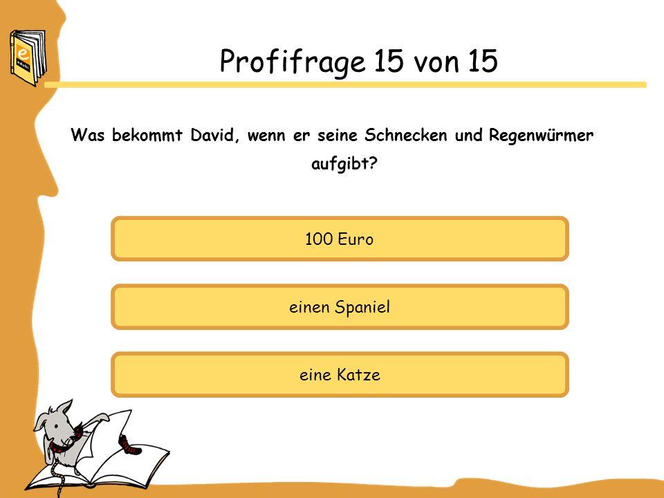 Profifrage 15 von 15 Was bekommt David, wenn er seine Schnecken und Regenwürmer aufgibt? 100 Euro einen Spaniel eine Katze