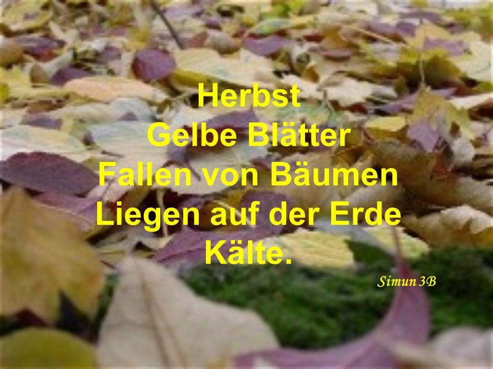 Herbst Gelbe Blätter Fallen von Bäumen Liegen auf der Erde Kälte. Simun 3B