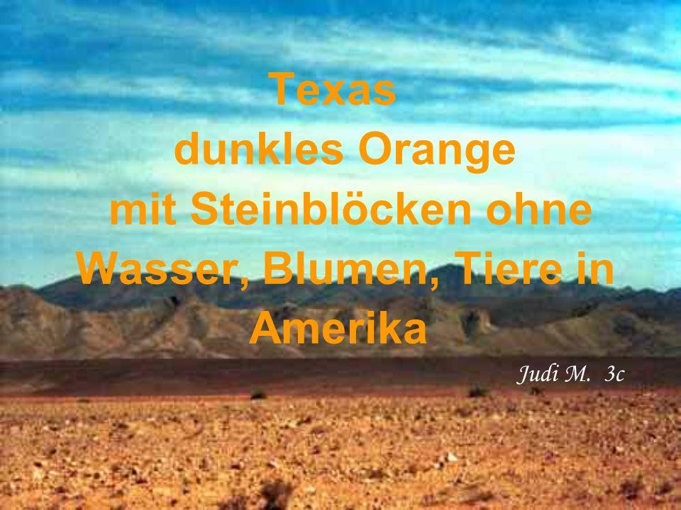 Texas dunkles Orange mit Steinblöcken ohne Wasser, Blumen, Tiere in Amerika Judi M. 3c