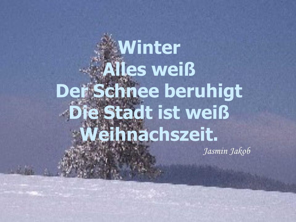Winter Alles weiß Der Schnee beruhigt Die Stadt ist weiß Weihnachszeit. Jasmin Jakob