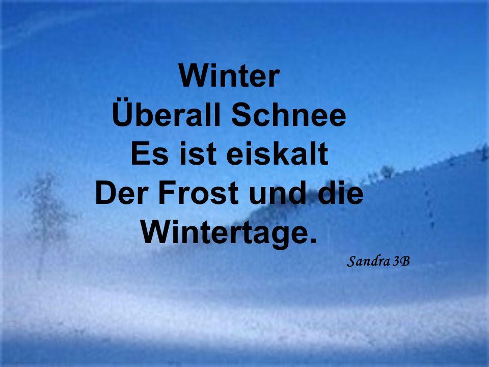 Winter Überall Schnee Es ist eiskalt Der Frost und die Wintertage. Sandra 3B