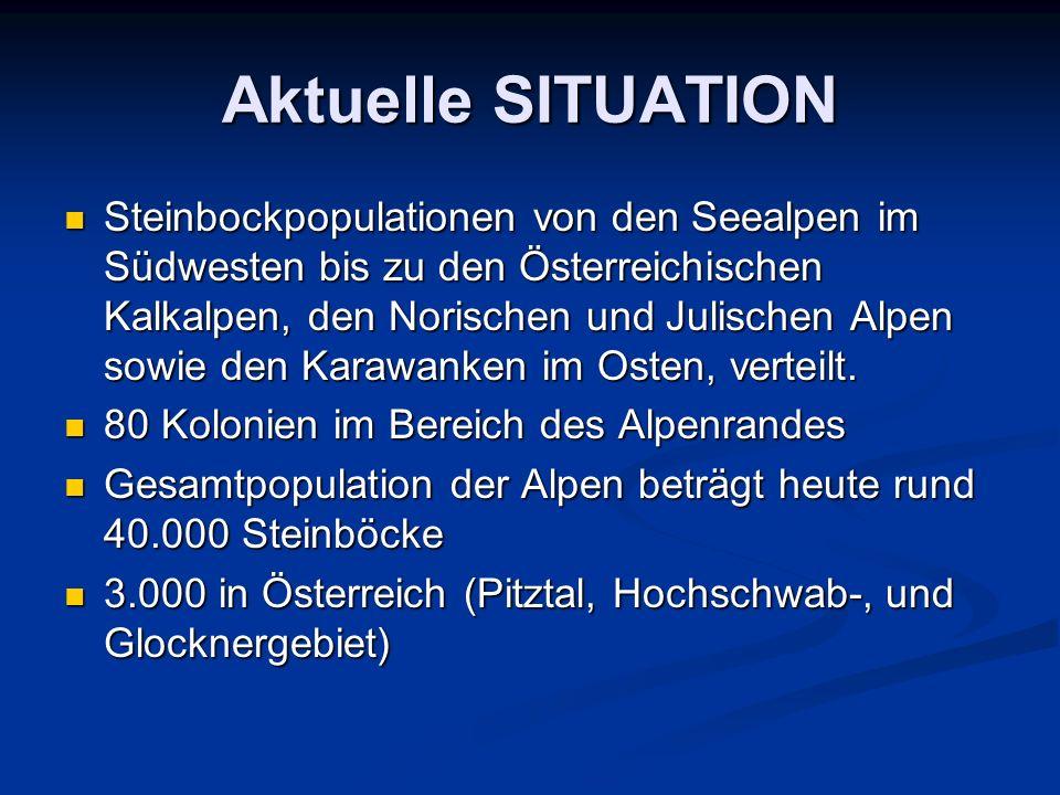 Aktuelle SITUATION Steinbockpopulationen von den Seealpen im Südwesten bis zu den Österreichischen Kalkalpen, den Norischen und Julischen Alpen sowie