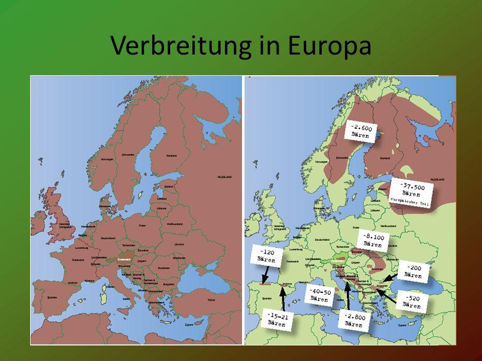 Verbreitung in Europa