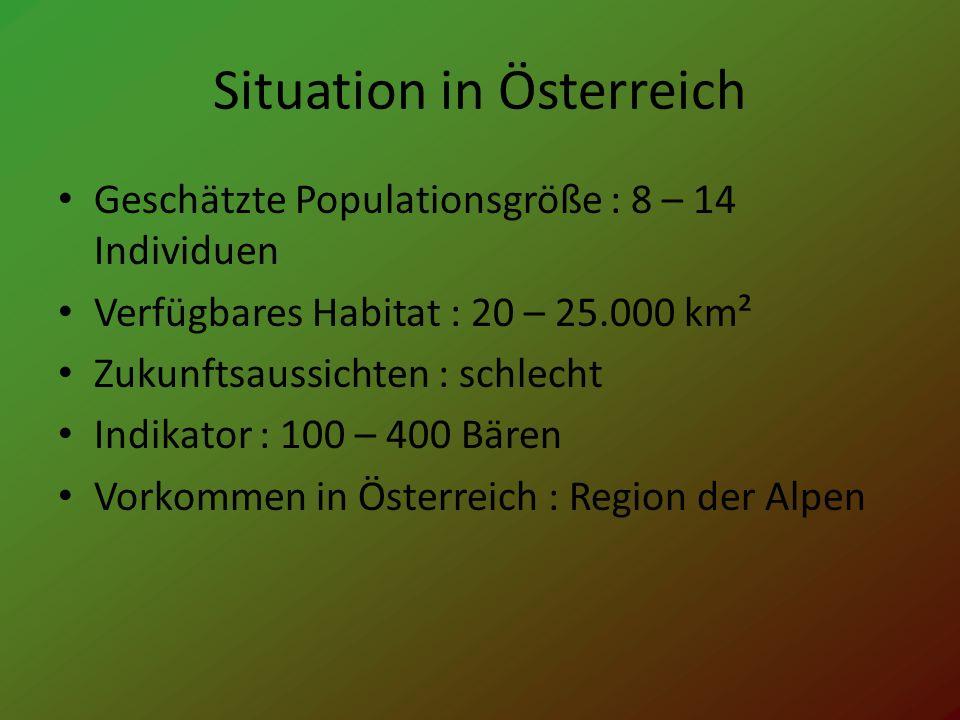 Situation in Österreich Geschätzte Populationsgröße : 8 – 14 Individuen Verfügbares Habitat : 20 – 25.000 km² Zukunftsaussichten : schlecht Indikator