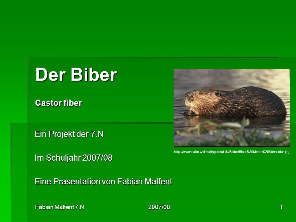 Fabian Malfent 7.N 2007/081 Der Biber Castor fiber Ein Projekt der 7.N Im Schuljahr 2007/08 Eine Präsentation von Fabian Malfent http://www.nabu-wollm
