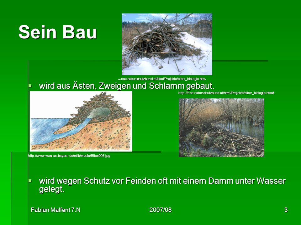 Fabian Malfent 7.N2007/083 Sein Bau http:// noe.naturschutzbund.at/html/Projekte/biber_biologie.htm # wird aus Ästen, Zweigen und Schlamm gebaut. wird