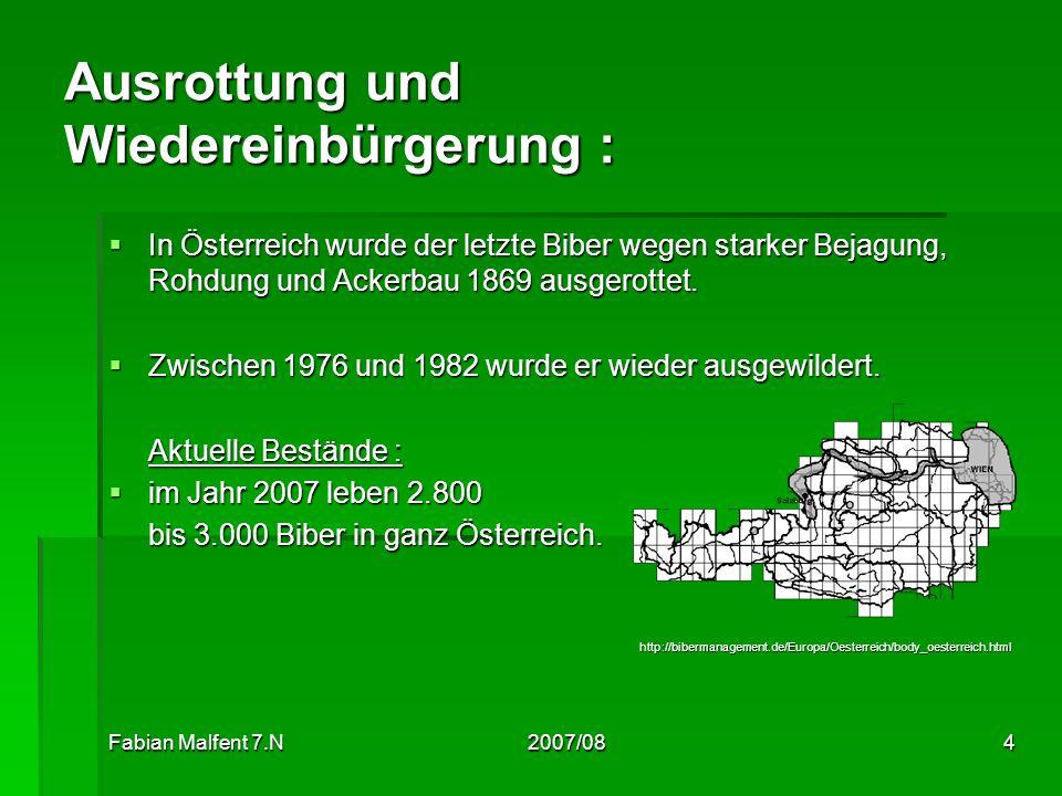 Fabian Malfent 7.N2007/084 Ausrottung und Wiedereinbürgerung : In Österreich wurde der letzte Biber wegen starker Bejagung, Rohdung und Ackerbau 1869