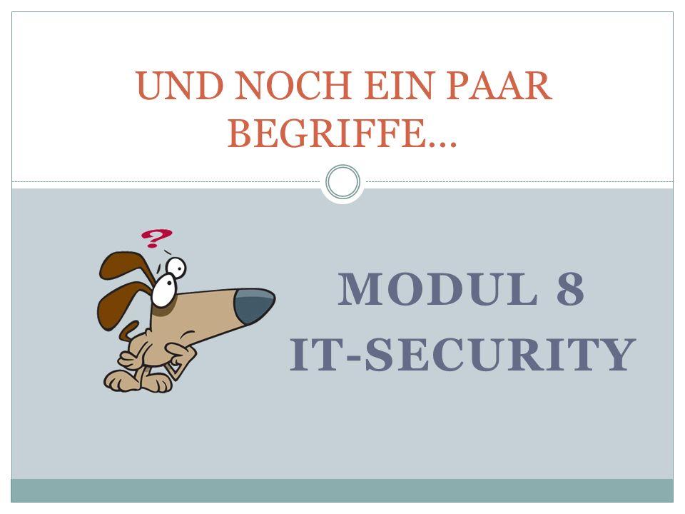 MODUL 8 IT-SECURITY UND NOCH EIN PAAR BEGRIFFE…