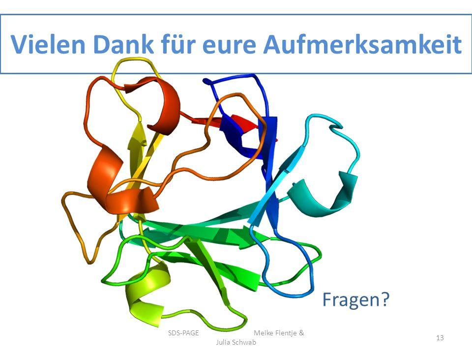 Vielen Dank für eure Aufmerksamkeit SDS-PAGE Meike Flentje & Julia Schwab 13 Fragen?