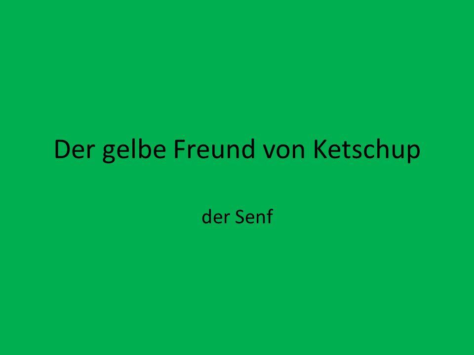 Der gelbe Freund von Ketschup der Senf