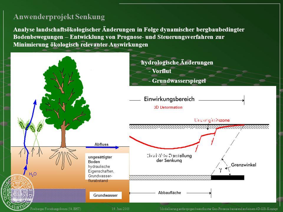 - Relief - Aquifer geometrische Änderungen 3D Deformation Abbaufläche Freiberger Forschungsforum (54. BHT) 19. Juni 2003 Modellierung anthropogen beei