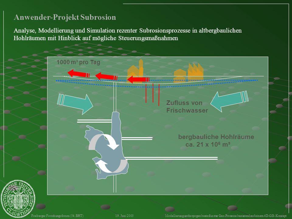 Freiberger Forschungsforum (54. BHT) 19. Juni 2003 Modellierung anthropogen beeinflusster Geo-Prozesse basierend auf einem 4D-GIS-Konzept Anwender-Pro