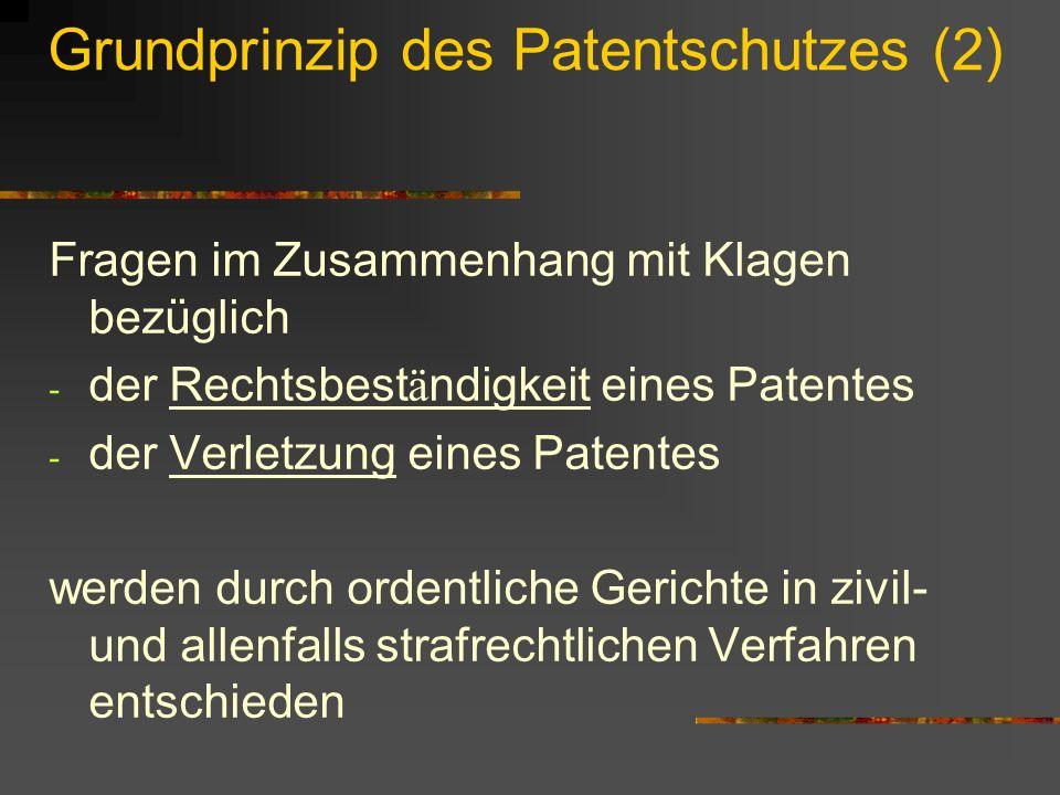 Grundprinzip des Patentschutzes (2) Fragen im Zusammenhang mit Klagen bezüglich - der Rechtsbest ä ndigkeit eines Patentes - der Verletzung eines Pate