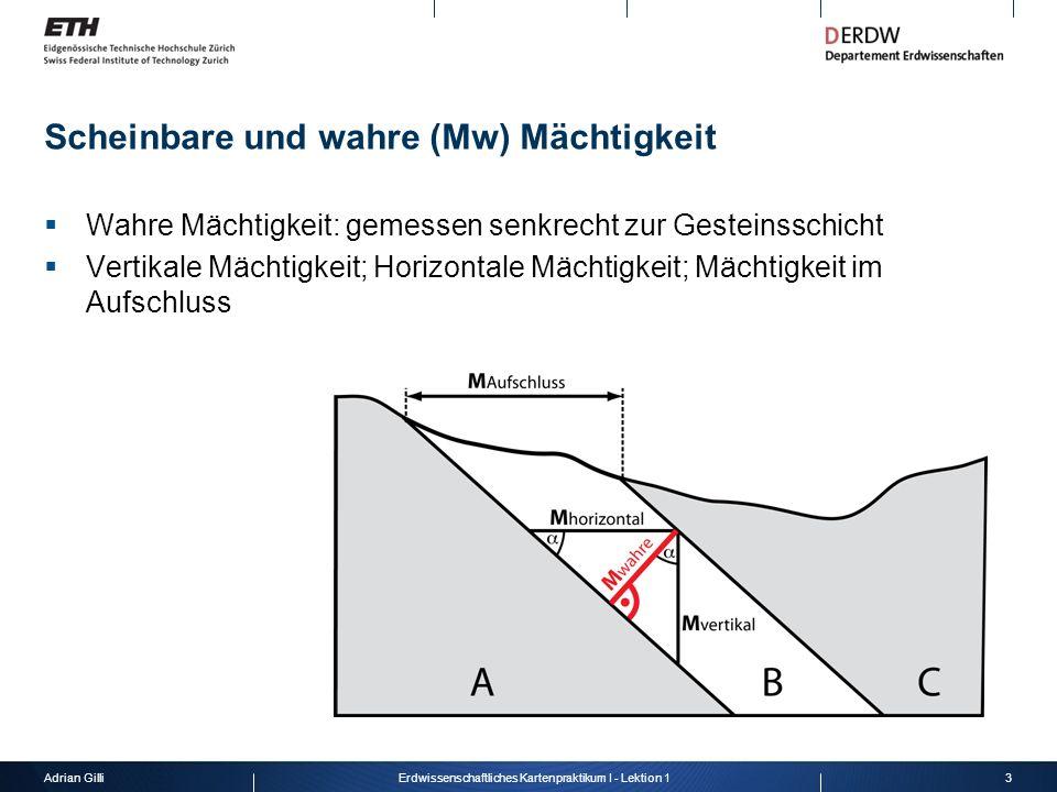 Adrian Gilli3Erdwissenschaftliches Kartenpraktikum I - Lektion 1 Scheinbare und wahre (Mw) Mächtigkeit Wahre Mächtigkeit: gemessen senkrecht zur Geste