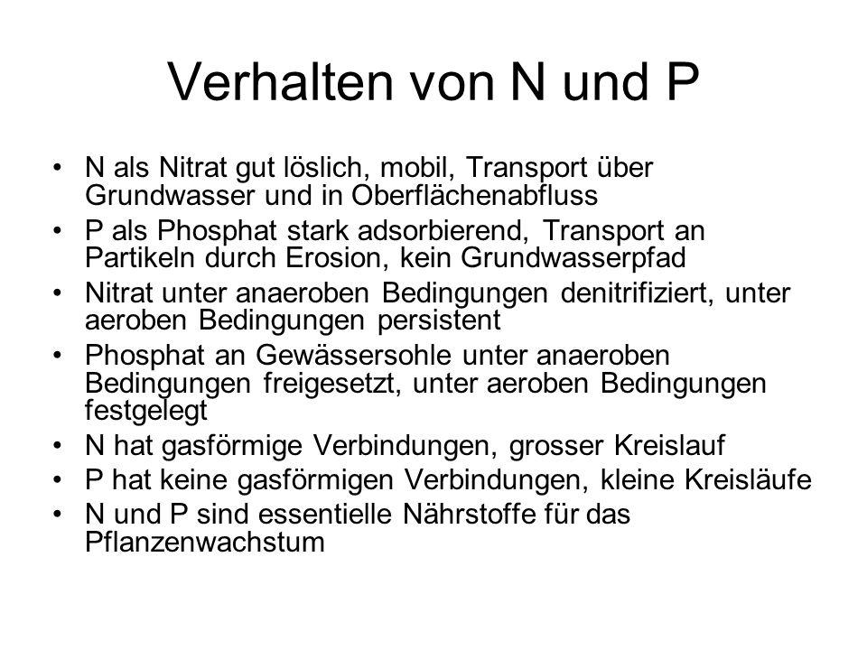 Verhalten von N und P N als Nitrat gut löslich, mobil, Transport über Grundwasser und in Oberflächenabfluss P als Phosphat stark adsorbierend, Transpo