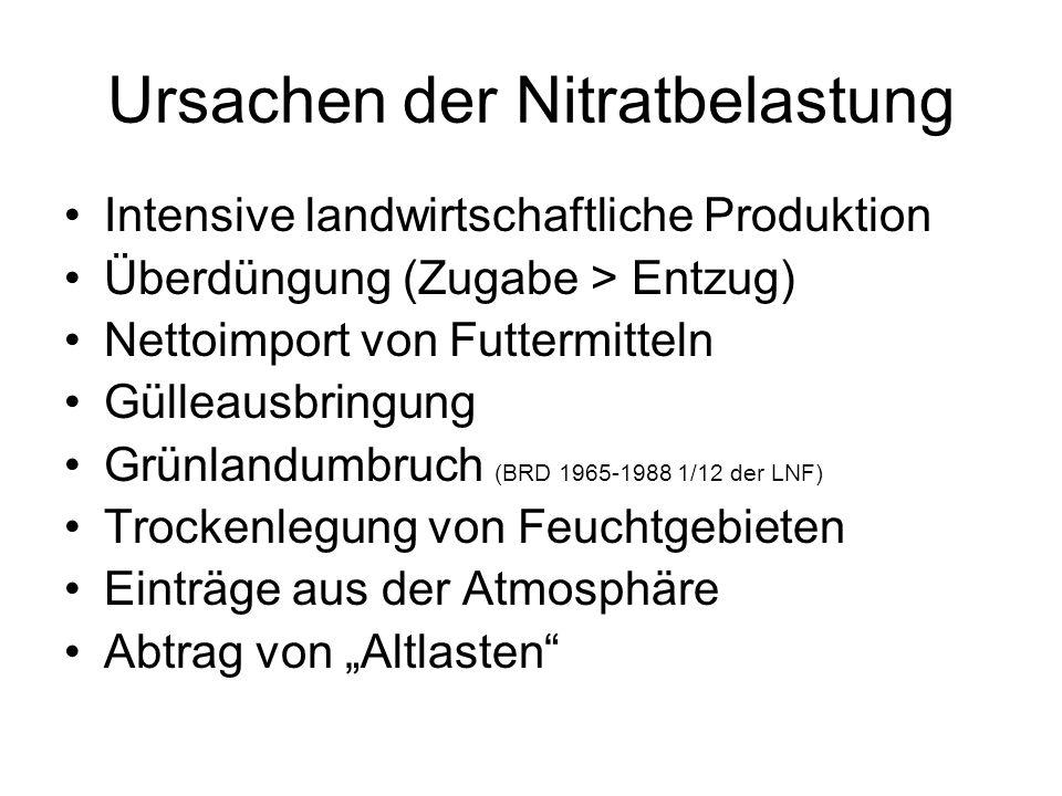 Ursachen der Nitratbelastung Intensive landwirtschaftliche Produktion Überdüngung (Zugabe > Entzug) Nettoimport von Futtermitteln Gülleausbringung Grü