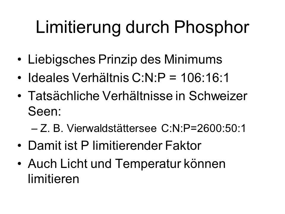 Limitierung durch Phosphor Liebigsches Prinzip des Minimums Ideales Verhältnis C:N:P = 106:16:1 Tatsächliche Verhältnisse in Schweizer Seen: –Z. B. Vi