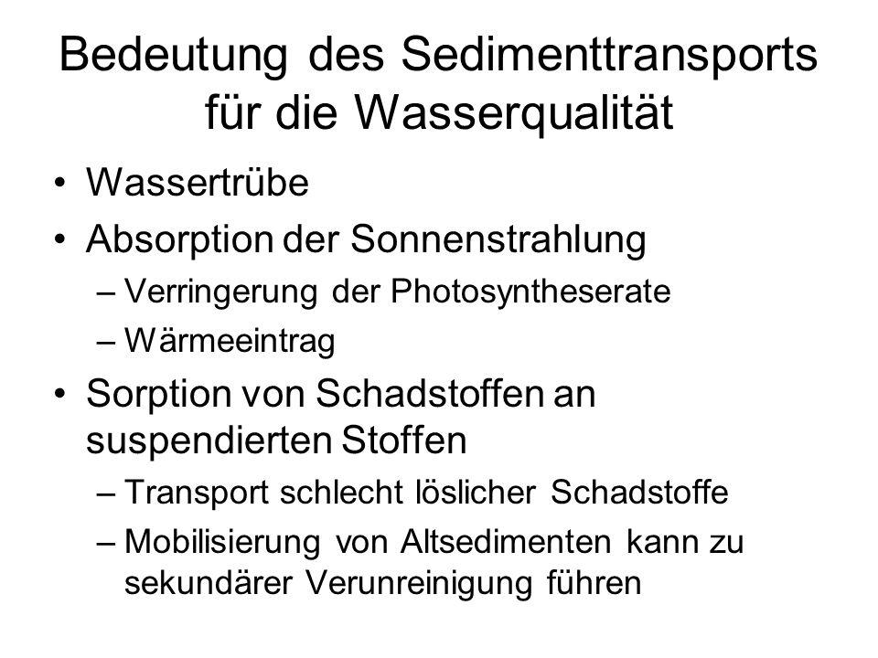 Bedeutung des Sedimenttransports für die Wasserqualität Wassertrübe Absorption der Sonnenstrahlung –Verringerung der Photosyntheserate –Wärmeeintrag S