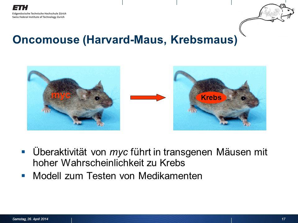 Oncomouse (Harvard-Maus, Krebsmaus) 17 Überaktivität von myc führt in transgenen Mäusen mit hoher Wahrscheinlichkeit zu Krebs Modell zum Testen von Medikamenten myc Krebs Samstag, 26.
