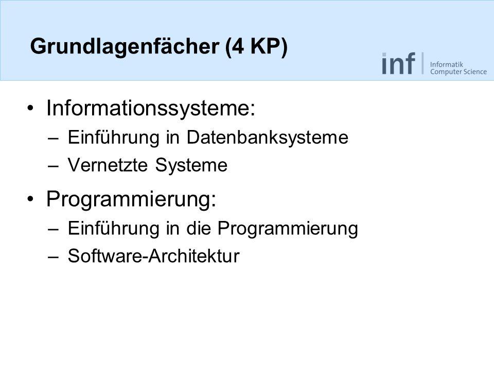 Grundlagenfächer (4 KP) Informationssysteme: –Einführung in Datenbanksysteme –Vernetzte Systeme Programmierung: –Einführung in die Programmierung –Software-Architektur