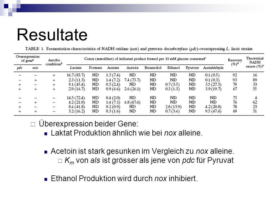 Resultate Überexpression beider Gene: Laktat Produktion ähnlich wie bei nox alleine.