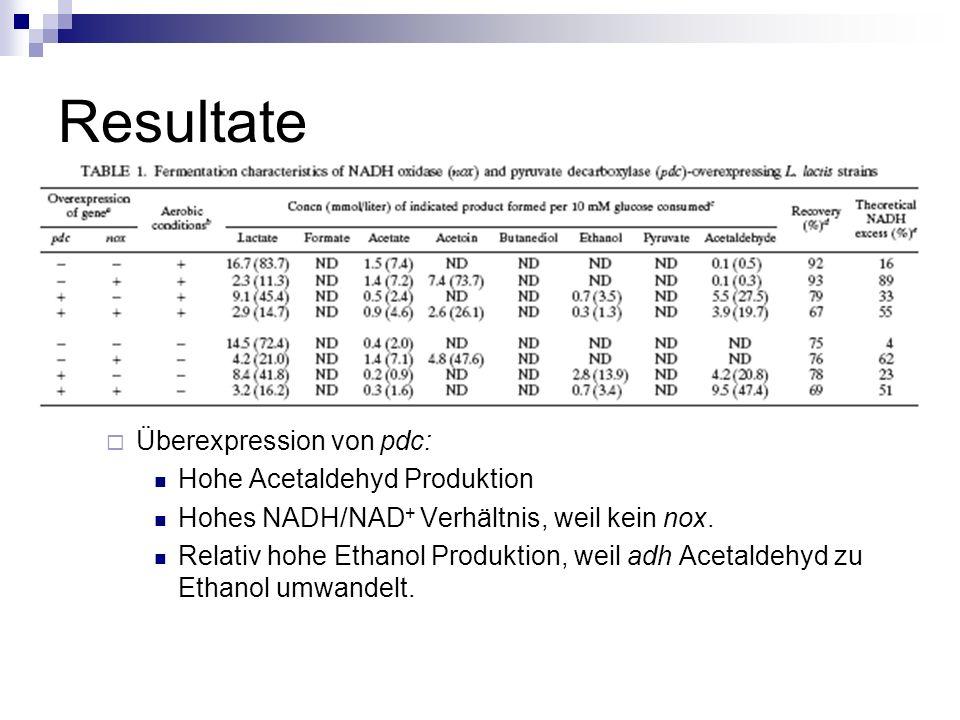 Resultate Überexpression von pdc: Hohe Acetaldehyd Produktion Hohes NADH/NAD + Verhältnis, weil kein nox.