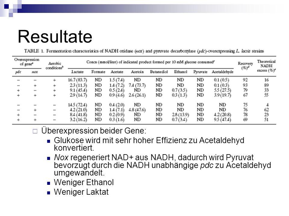 Resultate Überexpression beider Gene: Glukose wird mit sehr hoher Effizienz zu Acetaldehyd konvertiert.