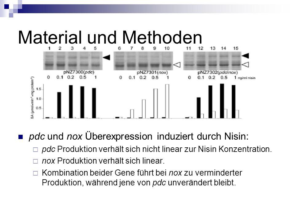 Material und Methoden 2-Schrit Fermentation Wachstum und Enzymproduktion.