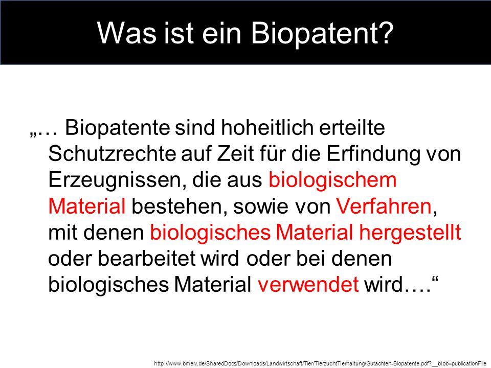 Brokkoli & Tomaten-Patent Problematik 20.und 21.