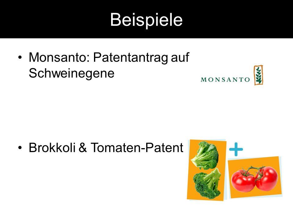 Beispiele Monsanto: Patentantrag auf Schweinegene Brokkoli & Tomaten-Patent