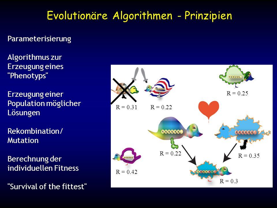 Evolutionäre Algorithmen - Prinzipien Parameterisierung Algorithmus zur Erzeugung eines
