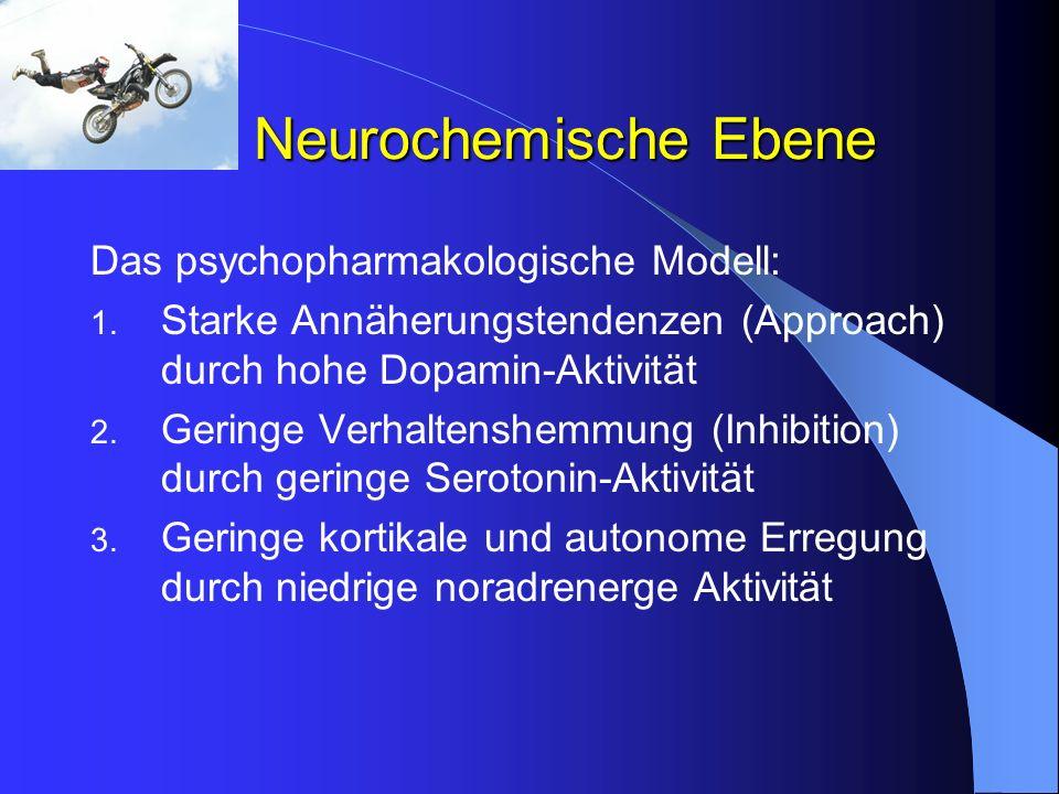 Neurochemische Ebene Das psychopharmakologische Modell: 1. Starke Annäherungstendenzen (Approach) durch hohe Dopamin-Aktivität 2. Geringe Verhaltenshe