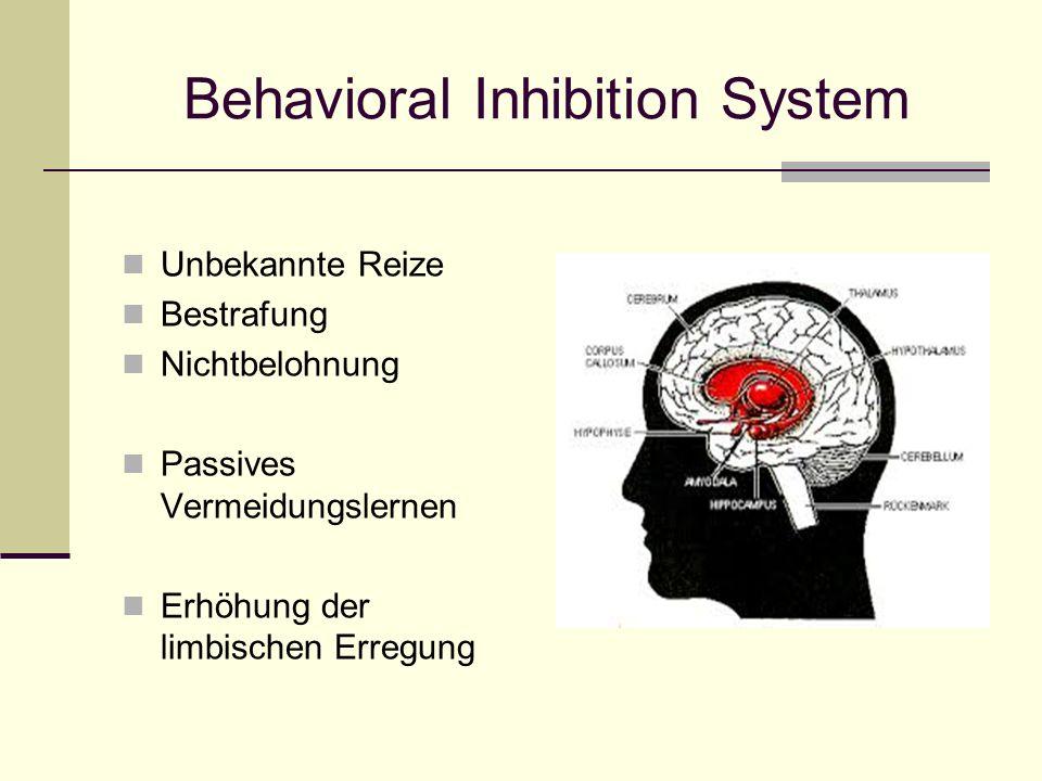 Behavioral Inhibition System Unbekannte Reize Bestrafung Nichtbelohnung Passives Vermeidungslernen Erhöhung der limbischen Erregung
