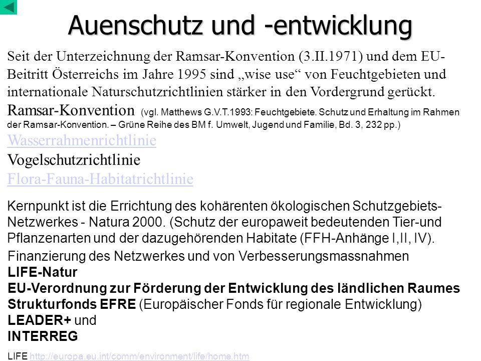 Wiesen- und Hochstaudengesellschaften in Auen Feuchtstandorte Röhrichte, Nasswiesen, Feuchtwiesen In Muldenlagen, Substrat +/- wasserstauend, nährstoffreich Wasser länger stehend als im umgebenden Gelände (Verlandung) Bei Verbindung zu fließendem Wasser Vegetationstypen (siehe Pflanzengesellschaften Österreichs) (fett gedruckt sind zumindest teilweise natürlich waldfreie Vegtypen) Großröhrichte (Dominanzgesellschaften mit Schilf, Rohrkolben, Teichbinse, Wasserschwaden) (aus Vbd Phragmition) Großseggen-Moore mesotropher Standorte (aus Vbd Magnocaricion) Nasswiesen (aus den Verbänden Molinion und Calthion) Hochstaudenvegetation ( UVb Filipendulenion) Brenndolden-Überschwemmungswiesen (Vb Cnidion venosi) frische bis mäßig frische Standorte Illyrische Überschwemmungswiesen (Deschampsion) vikariierender Vbd zum Cnidion inSE-Europa