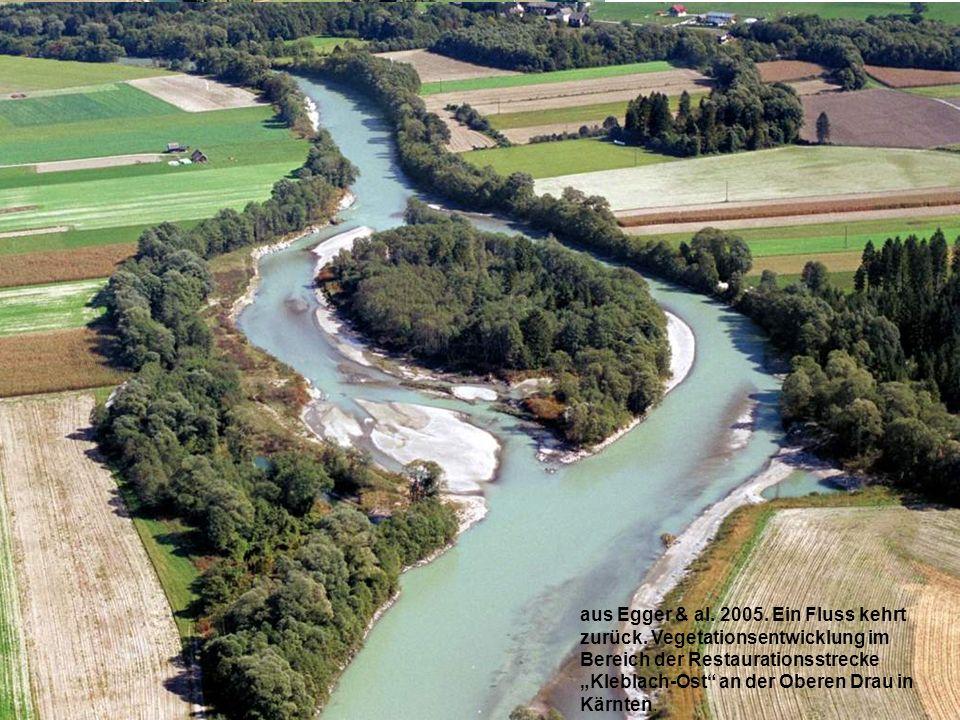 Bettaufweitung Obere Drau bei Kleblach aus Egger & al. 2005. Ein Fluss kehrt zurück. Vegetationsentwicklung im Bereich der Restaurationsstrecke Klebla