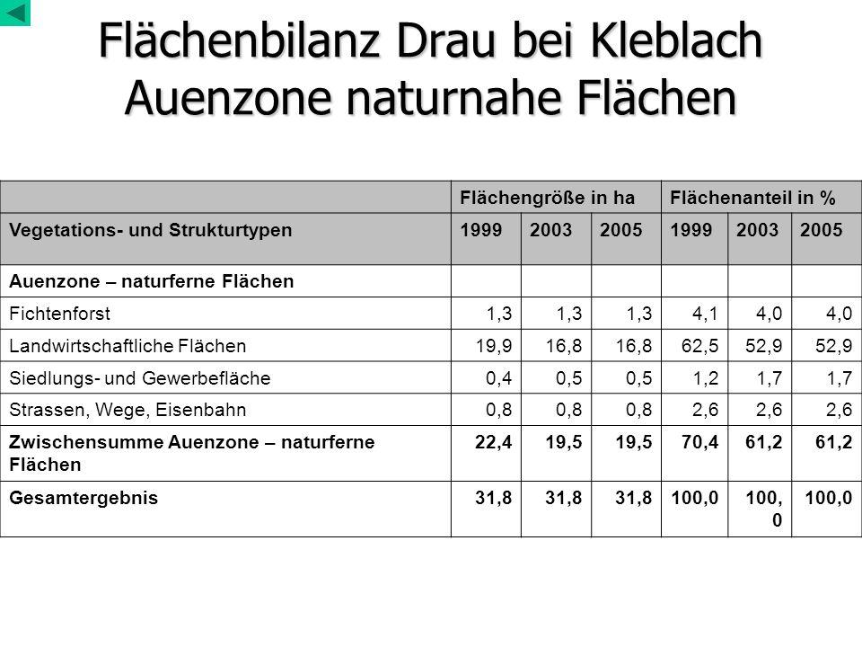 Flächenbilanz Drau bei Kleblach Auenzone naturnahe Flächen Flächengröße in haFlächenanteil in % Vegetations- und Strukturtypen199920032005199920032005